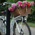 Andare in bici allunga la vita